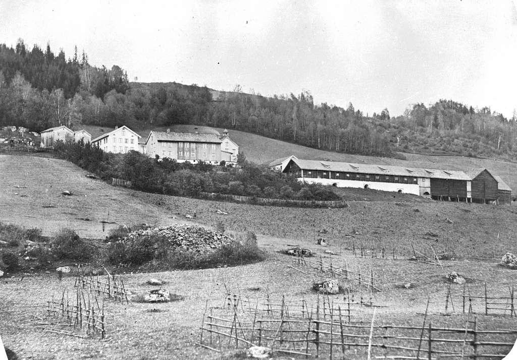 Oversikt Berg store, Brøttum, Ringsaker. Tømte hesjer i forgrunn.