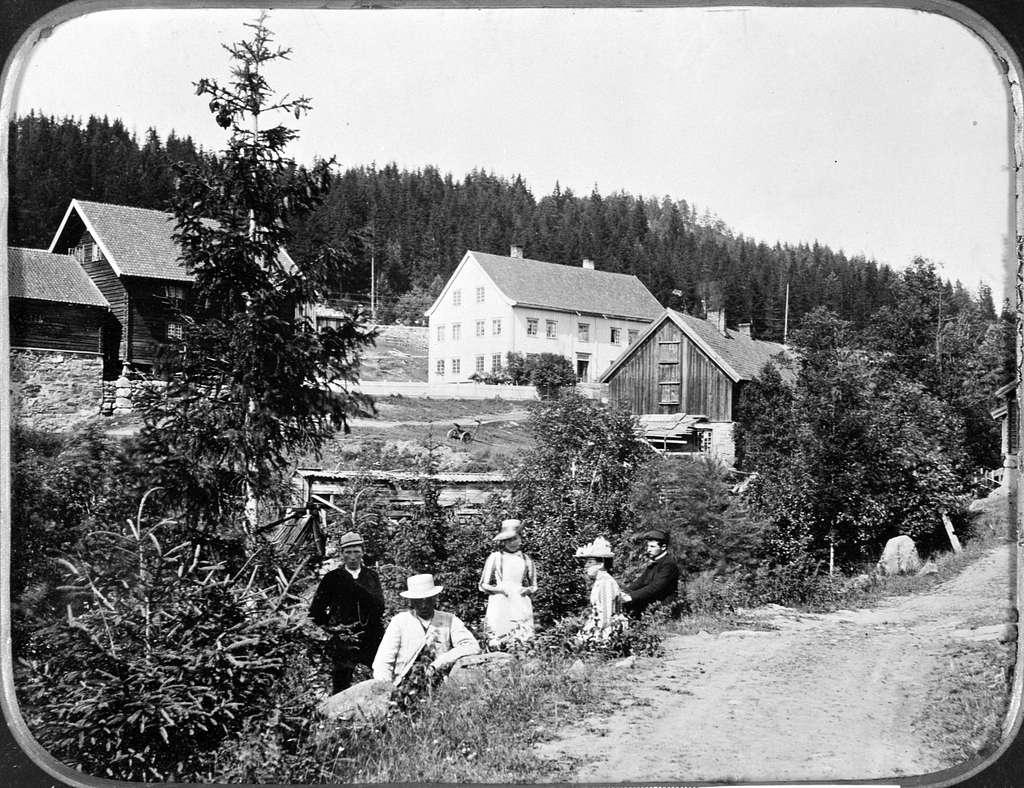 EKSTERIØR: GARDSBRUK, VIK MED BRENNE, TANGEN, Hovedbygningen og de nærmeste uthusene på Vik gård på Tangen 1880. Folkene i vegkanten er ukjente,