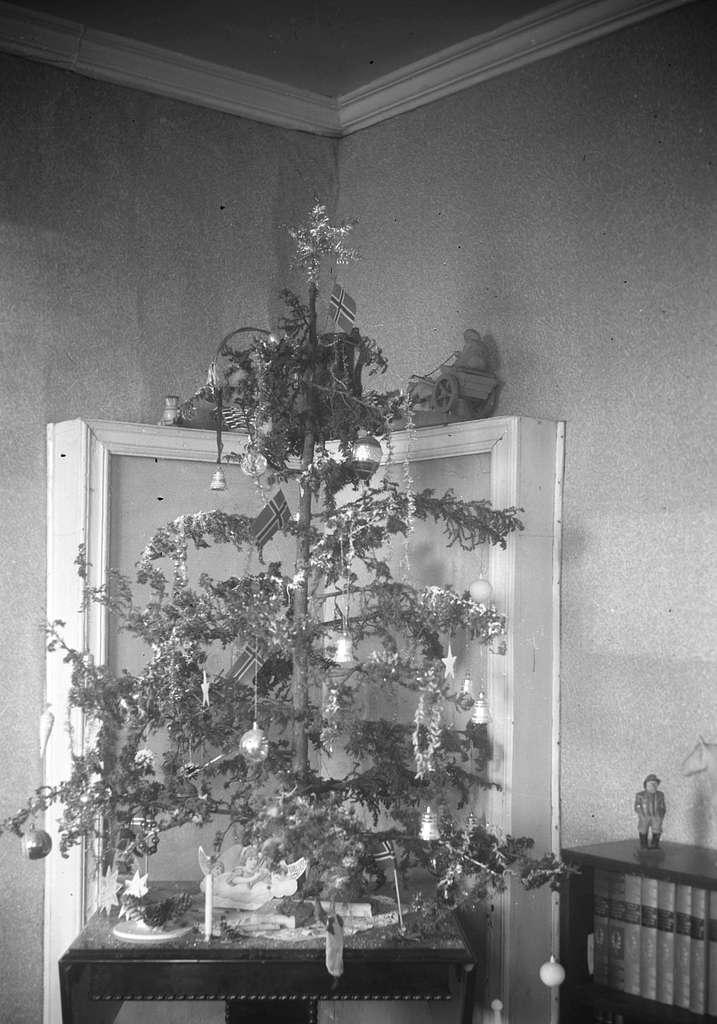 Fotografi av et hjemmelaget juletre under krigen. Treet er laget av einebusker. Bildet kan være tatt hjemme hos Leif Hauge i Vadsø.