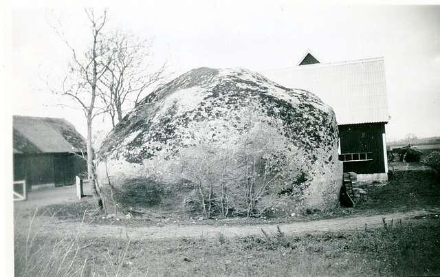 Trolle-Ljungby-stenen. (Rinkaby).