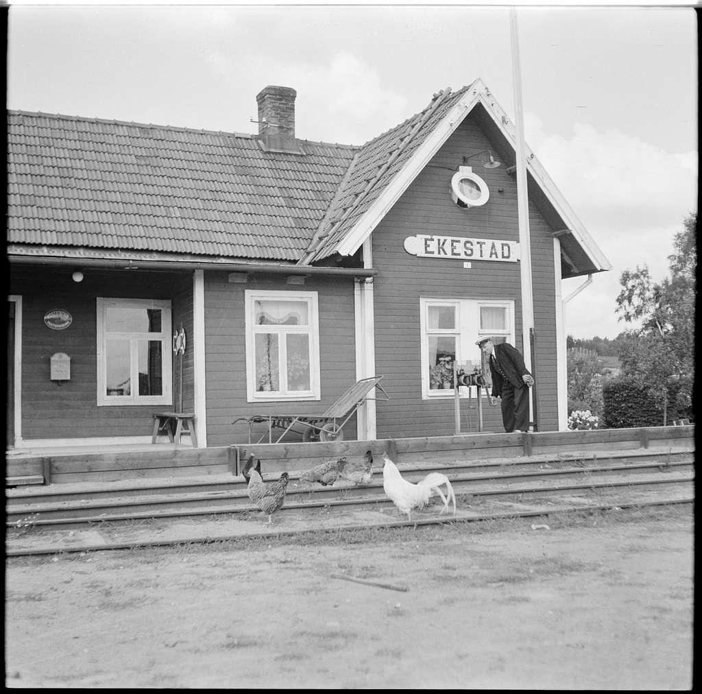 Ekestad station med höns och tupp på spåret.