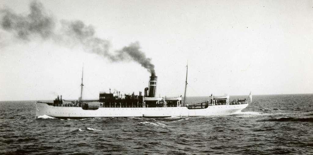 D/S Arcturus (b.1899, Gourlay Bros. & Co., Dundee)