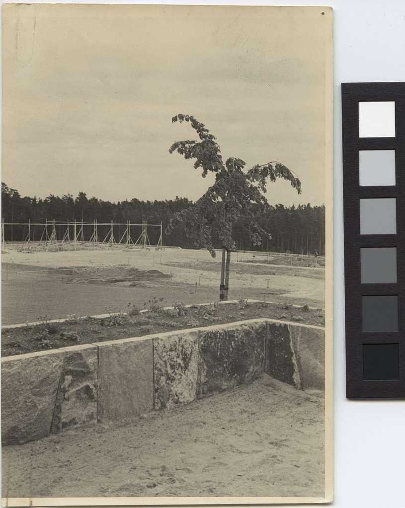 Skogskrematoriet, SkogskyrkogårdenUtstakning på byggplatsen