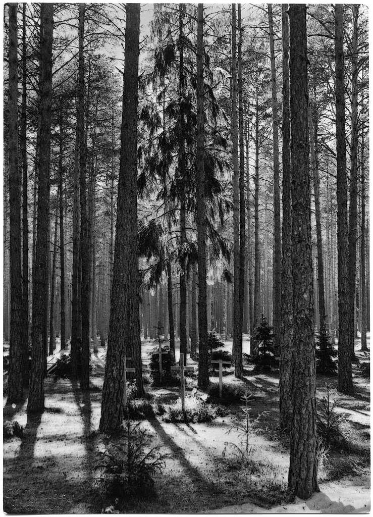 SkogskyrkogårdenGravplatser i skogen